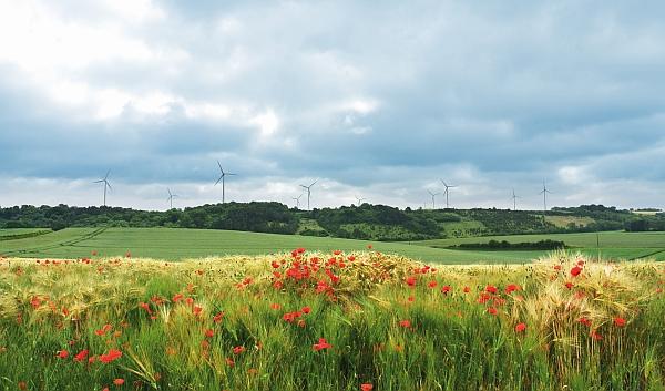 Enertrag-Windpark in Frankreich. / Foto: Unternehmen
