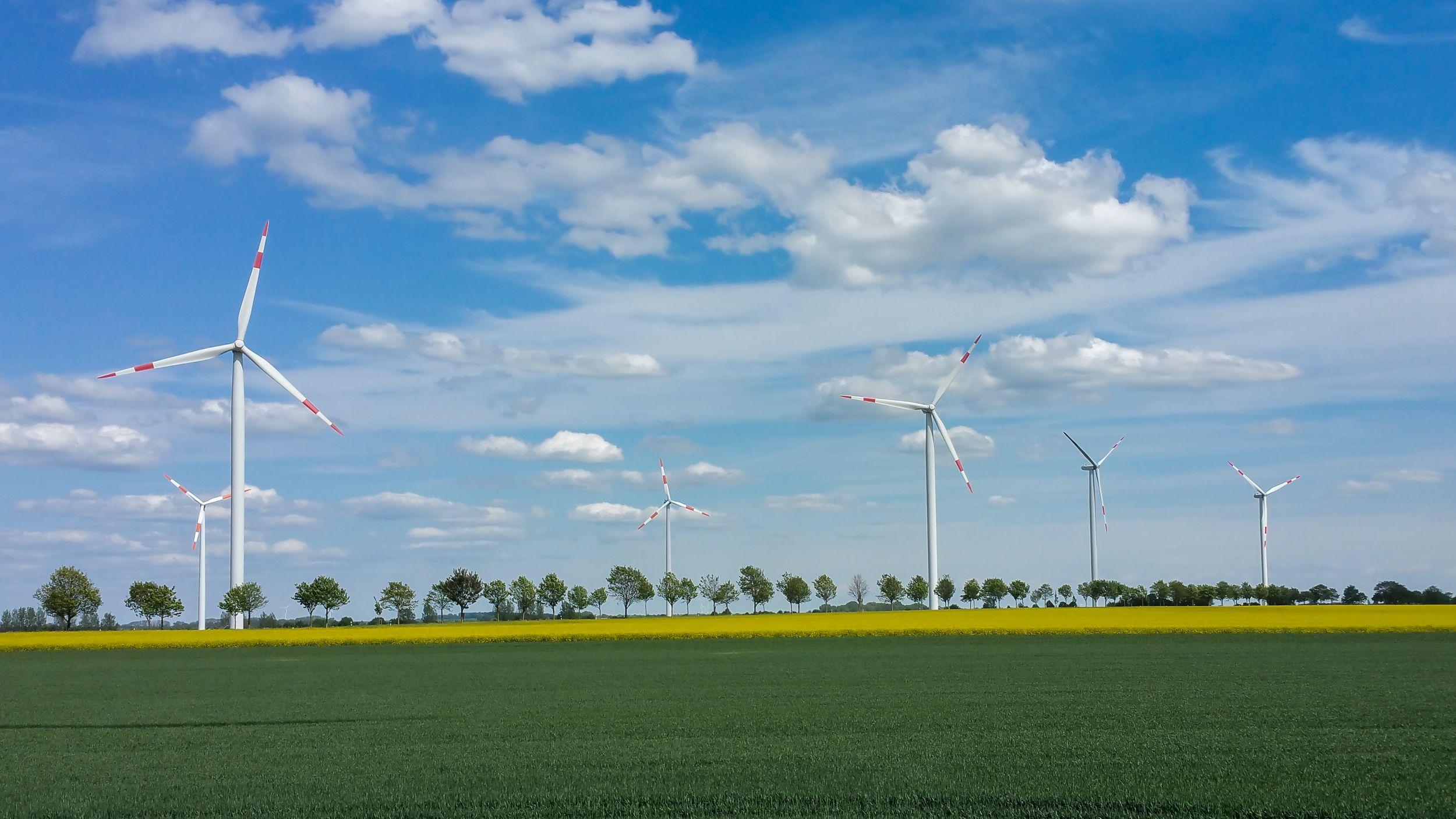 Ein Prokon-Windpark: Die Energiegenossenschaft und ihre Freunde suchen nach Wegen, um die Bürgerenergie-Bewegung zu unterstützen. Durch das Erneuerbare-Energien-Gesetz 2017 sehen Anleger und Genossen die dezentrale Energiewende in Deutschland gefährdet. Und auch in anderen europäischen Ländern gibt es neue Hürden für Windkraft-Projekte. / Foto: Unternehmen