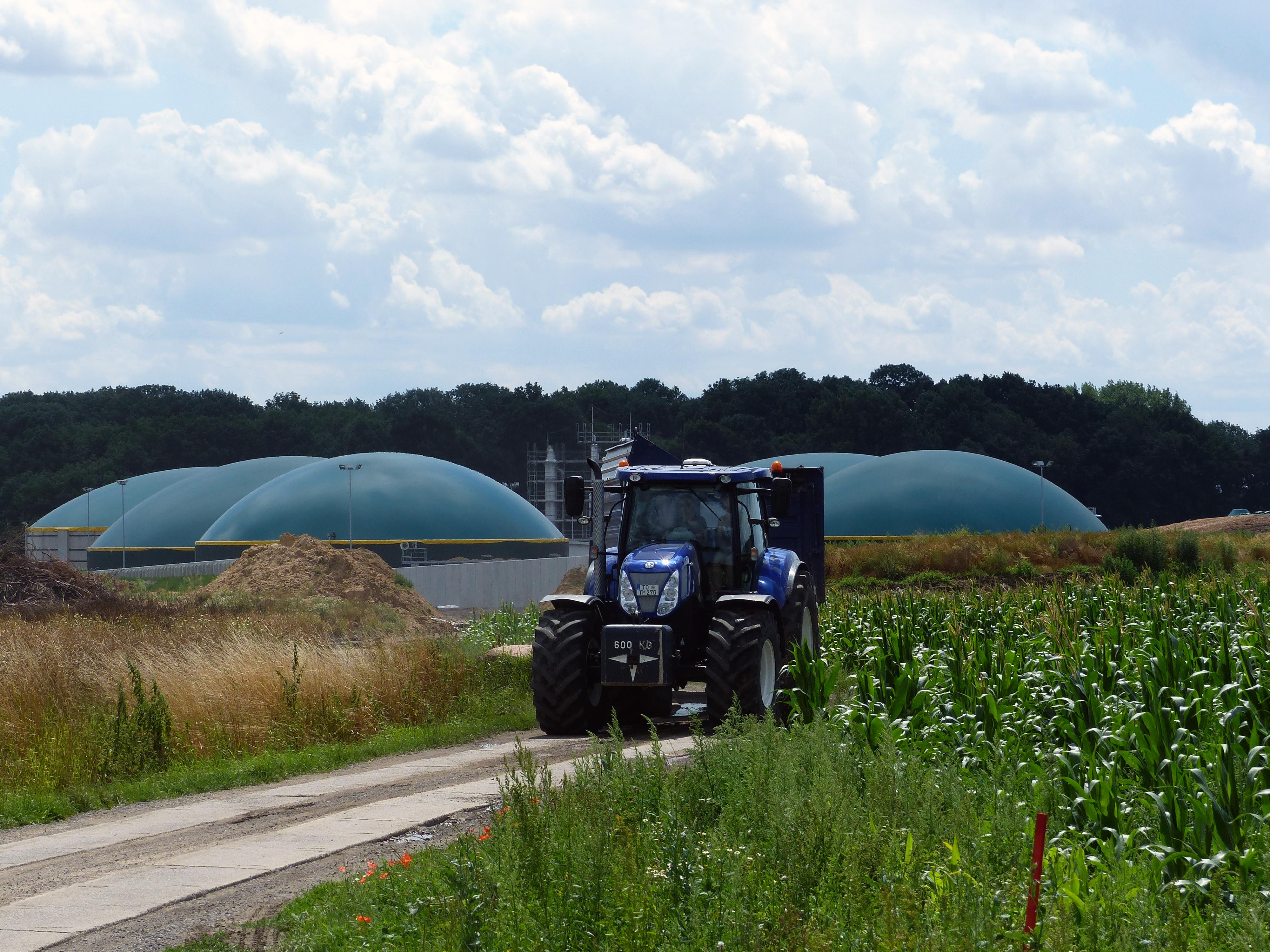 """Die UDI-Gruppe sammelt mit """"UDI Sprint Festzins IV"""" Anlegerkapital. ALs Investment kommen unter anderem Bioenergieanlagen in Frage. / Foto: UDI"""