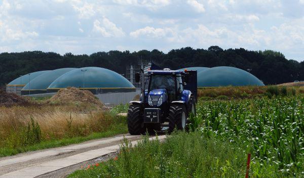 Bilden Biogasprojekte den Investitions-Schwerpunkt des UDI Energie Festzins 11? Das beantwortet der ausführliche ECOanlagecheck. / Foto: UDI