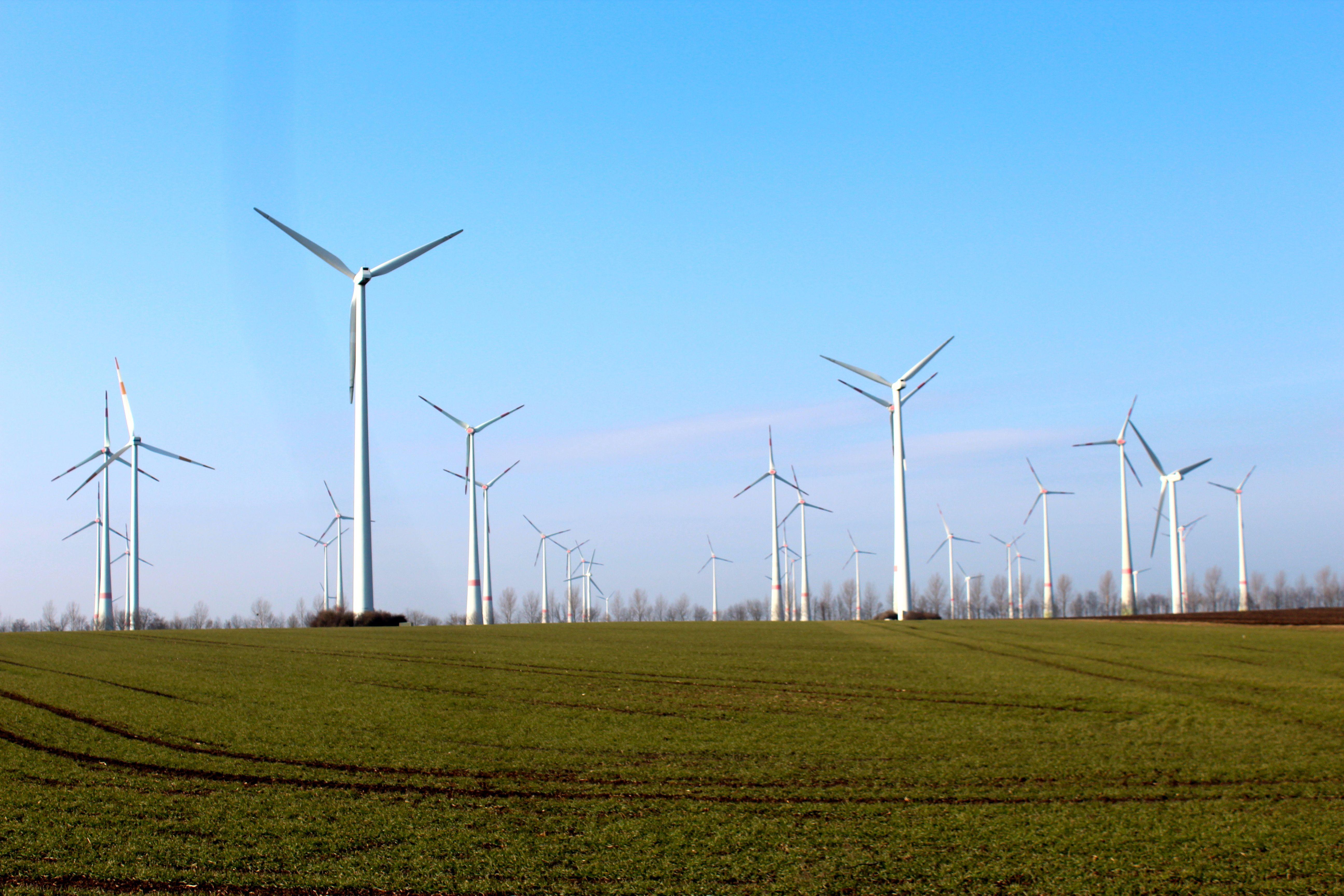 Der Windpark Boldecker Land, eine frühere Ökorenta-Investition. Der Ökorenta Erneuerbare Energien IX setzt vor allem auf Windkraft. / Foto: Ökorenta
